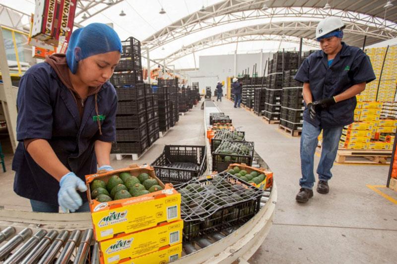 Exportaciones de México crecen 10%